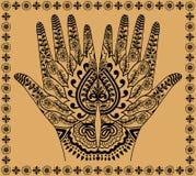 Mãos da mulher Fotos de Stock Royalty Free
