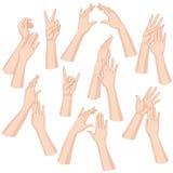 Mãos da mulher ajustadas ilustração stock