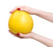 Mãos da mulher com citrinos tropicais Foto de Stock