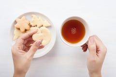 Mãos da mulher com copo e cookies de chá foto de stock royalty free