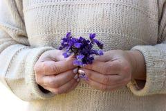 Mãos da mulher com flores azuis Fotos de Stock Royalty Free