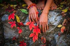 Mãos da mulher com lote dos anéis e dos braceletes nas folhas vermelhas do outono imagens de stock royalty free
