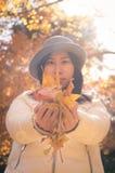 Mãos da mulher do outono com as folhas amarelas 2 da queda fotografia de stock