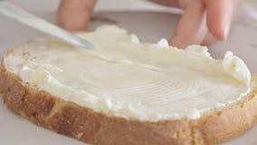 Mãos da mulher que espalham o queijo creme no pão vídeos de arquivo