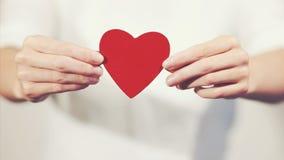 Mãos da mulher que guardam o símbolo do amor da forma do coração Foto de Stock Royalty Free