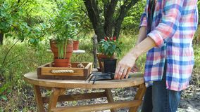 Mãos da mulher que plantam flores em uns potenciômetros no jardim vídeos de arquivo