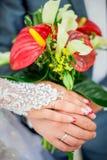 Mãos da noiva e do noivo com anéis Fotos de Stock