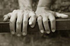 Mãos da terra arrendada Imagens de Stock