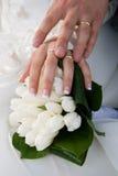 Mãos da terra arrendada com anéis de casamento foto de stock royalty free