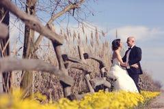 Mãos da terra arrendada da noiva e do noivo Fotografia de Stock
