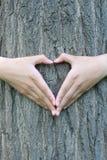 Mãos dadas fôrma coração Fotografia de Stock