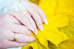 Mãos das folhas da queda dos noivos fotografia de stock