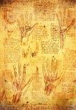 Mãos de Da Vinci Imagem de Stock Royalty Free