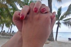Mãos de Holdind fotografia de stock royalty free