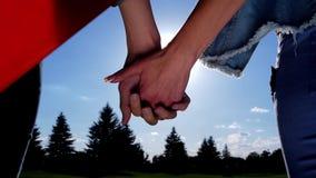 Mãos de junta dos pares lésbicas que olham o sol brilhante video estoque