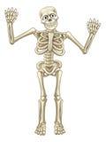 Mãos de ondulação dos desenhos animados de esqueleto ilustração do vetor