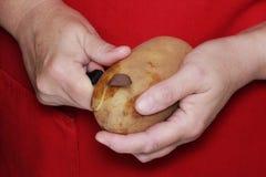 Mãos de um cozinheiro chefe Imagem de Stock Royalty Free