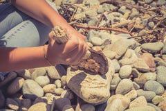 Mãos de uma moça que guarda partes de madeira e que faz o fogo na praia com pedras lisas Foto de Stock Royalty Free