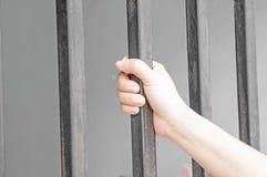 Mãos de uma mulher fotografia de stock