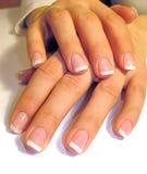 Mãos de Womans Imagem de Stock