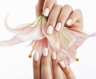 Mãos delicadas da beleza com o tratamento de mãos que guarda a flor fotografia de stock