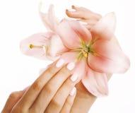Mãos delicadas da beleza com o tratamento de mãos que guarda a flor imagens de stock royalty free