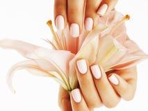 Mãos delicadas da beleza com o tratamento de mãos que guarda a flor foto de stock royalty free