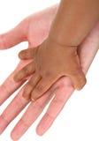 Mãos do bebê e da matriz junto Fotografia de Stock Royalty Free