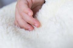 Mãos do bebê em uma cobertura com espaço da cópia do texto Fotos de Stock Royalty Free