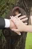 Mãos do casamento Fotos de Stock