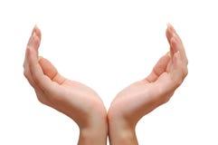 Mãos do Chalice Imagem de Stock