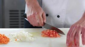 Mãos do cozinheiro chefe que desbastam o tomate vídeos de arquivo