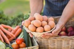 Mãos do fazendeiro que guardam uma cesta dos ovos Imagem de Stock Royalty Free