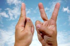 Mãos do Iv Fotografia de Stock