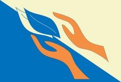 Mãos do logotipo com folhas Foto de Stock