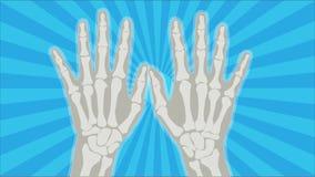 Mãos 2 do raio X Imagem de Stock