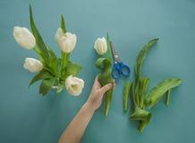 Mãos do ` s das crianças com um ramalhete da opinião superior das tulipas Fundo para um cartão do convite ou umas felicitações A  Imagem de Stock