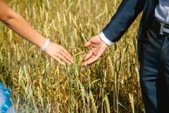 Mãos dos newlyweds fotos de stock royalty free