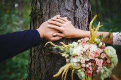 Mãos dos newlyweds com anéis de casamento fotos de stock