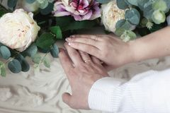 Mãos dos recém-casados com alianças de casamento fotos de stock
