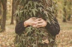 Mãos e árvore na floresta Imagens de Stock Royalty Free