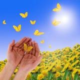 Mãos e borboletas Fotografia de Stock
