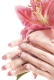 Mãos e flor da mulher Fotografia de Stock