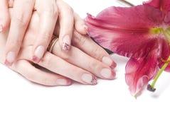 Mãos e flor da mulher Fotos de Stock Royalty Free