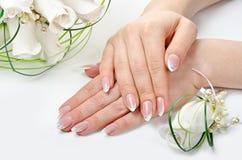Mãos e flores Foto de Stock