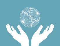 Mãos e globo Fotografia de Stock