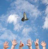 Mãos e pássaro Imagens de Stock Royalty Free