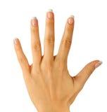 Mãos fêmeas bonitas com o manicure francês isolado no branco Imagem de Stock