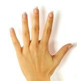 Mãos fêmeas bonitas com o manicure francês isolado no branco Fotos de Stock