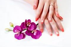 Mãos fêmeas com arte das pétalas e do prego da orquídea Foto de Stock Royalty Free